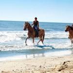Passeggiate a cavalo spiagge Roccamare